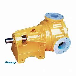 Ebsray Pumps